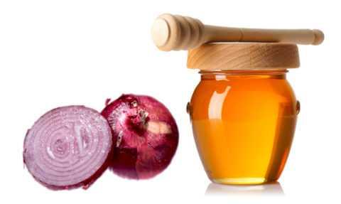 Луковый сок с медом свойства и применение. Способы приготовления лука с медом от кашля. Лук с медом – народное средство от простуды